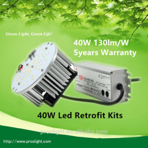 Discount Price ETL Listed Replace 125W Metal Halide/HPS Meanwell Driver 40W LED Street Light Retrofit pictures & photos