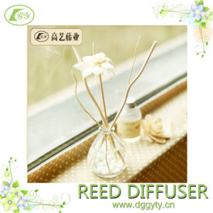 Reed Rattan Diffuser Gift Set with Nature Reed Stick Glass Bottle Home Air cleaner and Purifier pictures & photos