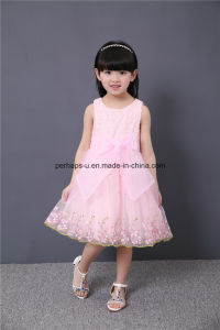 High Quality Lovely Embroidered Flower Girls Dress Children Wear pictures & photos