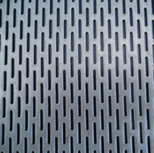 Round Hole Ss Perforated Mesh Panel pictures & photos