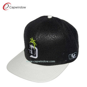 Factory Direct Wholesale High Quality Snapback Cap Wiith Embroidery pictures & photos