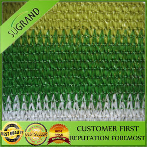 Polyethylene Fence Netting, Rigman Safety, 100% Shade Rate Net pictures & photos