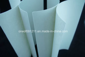 Nonwoven Chemical Sheet for Shoe Counter Material pictures & photos