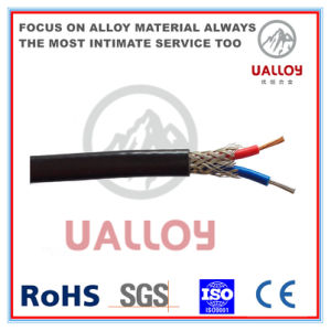 0.2r/0.5r/1.0r/1.5r/2.0r/2.5r Thermocouple Wire pictures & photos