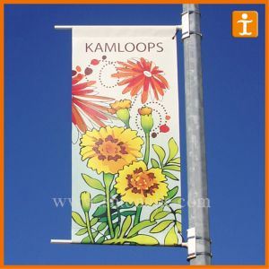 Custom Outdoor Vinyl PVC Banner, PVC Street Banner pictures & photos