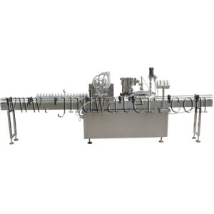 Automatic Paste Liquid Filling Machine with CE Standard pictures & photos