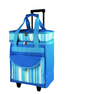 Creative Design Trolley Cooler Bags pictures & photos
