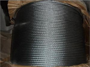 Galvanized 7*19 20mm Steel Wire Rope for Machine