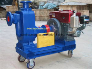 Submersible Sewage Water Pump pictures & photos