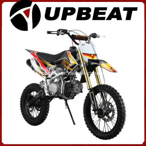 Upbeat New Model 125cc Crf110 Pit Bike Cheap for Wholesale pictures & photos