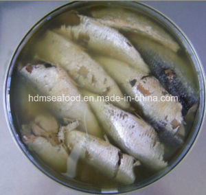 Fresh Frozen Sardine Canned for Raw Material pictures & photos