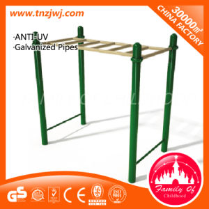 Factory Price Hot Selling Children Outdoor Gym Equipment in Park pictures & photos