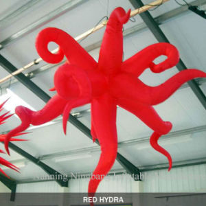 Event Decoration Inflatable Hydra Star with LED Light for Sale pictures & photos