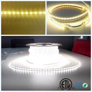 ETL/UL 120V/110V 60LED High Lumen IP67 LED Light Strip Rope pictures & photos
