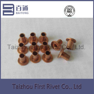 5X7mm Copper Plated Flat Head Fully Tubular Steel Rivet pictures & photos