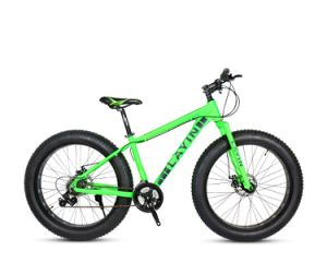 High Quality Aluminum Alloy Snow Bike with Fat Tires pictures & photos