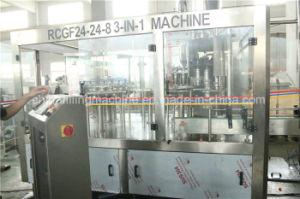 SUS304 Mango Juice Bottle Filling Machine with PLC Control pictures & photos