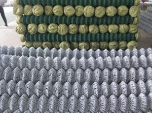 Hot Dipped Galvanized Cyclone Mesh/Chain Link Fence pictures & photos