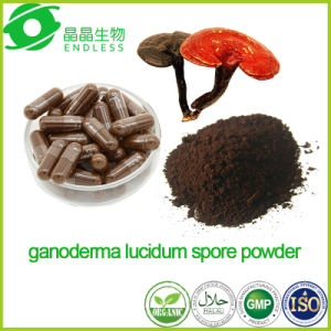 Private Label Organic Certification Ganoderma Lucidum Spore Powder Capsule pictures & photos