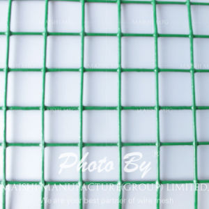 PVC Coated 1/4 Inch Galvanized Welded Wire Mesh pictures & photos
