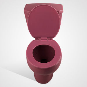 Ceramic Floor Mounted Side Handle Two Piece Wc, Purplish Red pictures & photos