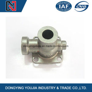 China Professional Manufacture for Metal Casting and Mass Production pictures & photos