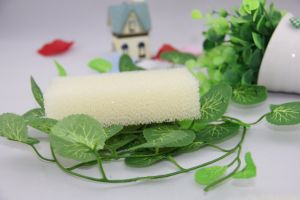 Cleaning Polyester Sponge Scouring Pad pictures & photos