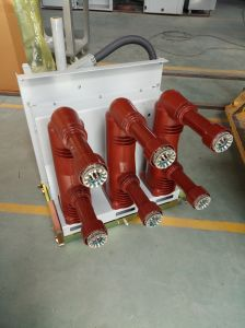 Indoor Medium Voltage Vacuum Circuit Breaker pictures & photos