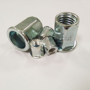 Zinc Plating Pan Head Hexagonal Rivet Nut pictures & photos
