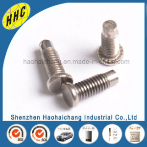 Professional Custom Self Threading Screw for Automobile pictures & photos