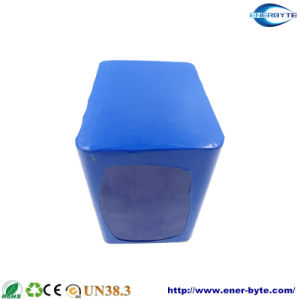 24V 50ah Lithium Battery for EV UPS Energy Storage pictures & photos