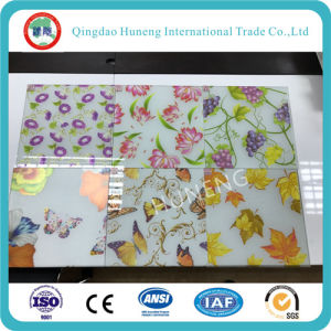 5mm Decorative Glass with Different Design on Surface pictures & photos