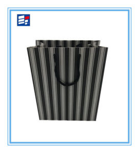 Professional Custom Paper Bag with Packaging Electronic pictures & photos