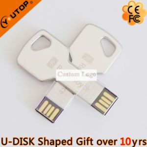 Metal Key USB Flash Drive as OEM Company Gifts (YT-3213-07) pictures & photos