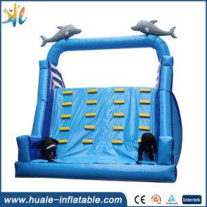 Children Game Jumpimg Toy Large Outdoor Inflatable Slide pictures & photos