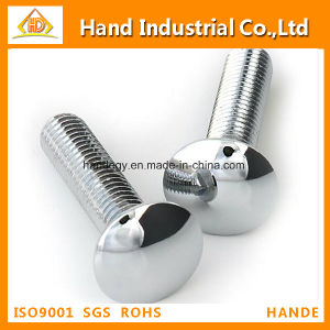 "Stainless Steel Top Quality Grade 304 1/4""~5/8"" Carriage Screw pictures & photos"