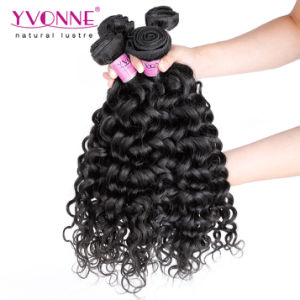 Italian Curly Brazilian Virgin Hair, 100% Human Hair Weaving Free Shipping pictures & photos