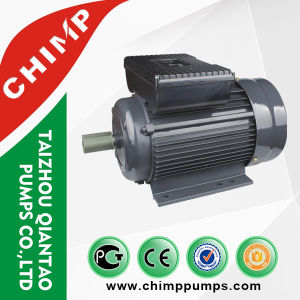 YL Single-Phase 2850rpm Double-Value Capacitor AC Motor (YL90S-2) pictures & photos