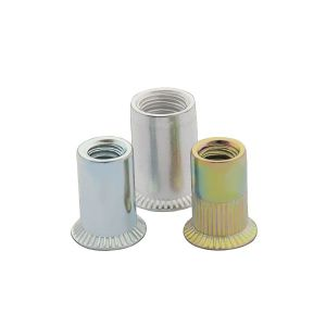 Ss304 A2 Ss316 A4 Countersunk Flat Head Knurled Rivet Nuts pictures & photos