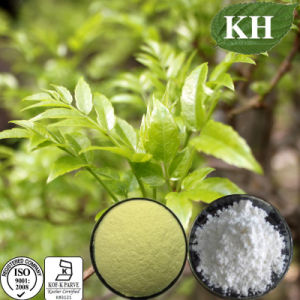 Best Sells Product Dihydromyricetin Powder, Vine Tea Extract pictures & photos