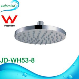 Commercial Chrome Plated ABS Shower Head Sanitary Ware pictures & photos