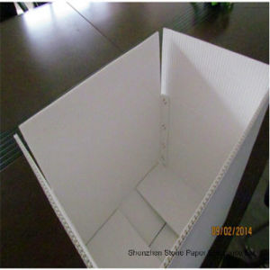 Stone Paper (RBD-350) Rich Mineral Board Double Coated-350um pictures & photos