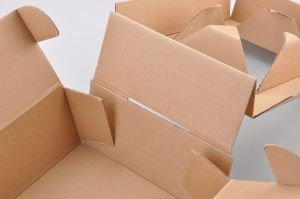 Kraft Paper Folding Box with Insert/Kraft Folding Box pictures & photos