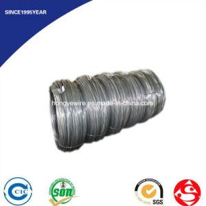 DIN 17223 En 10270 JIS G 3521 GB 3206 Fence Steel Wire pictures & photos