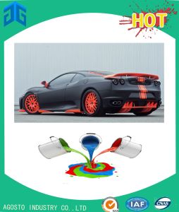 Hot Sale Car Wrap Around The Worldwild pictures & photos