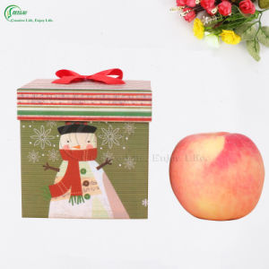 New Custom Colorful Printing for Apple Packing Christmas Gift Box (KG-PX079) pictures & photos