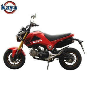 110cc Mini Motorcycle with Alloy Wheel Fr. Disc Brake & Rr. Disc Brake Ky120gy-2