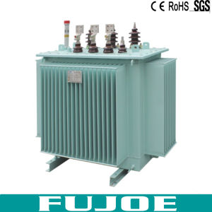 Double Coils S11 Oil-Immersed Transformer 63kVA pictures & photos