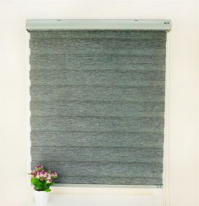 Designs Curtain Living Room Bedroom Hotel Blackout Window Curtain Shade Blinds pictures & photos