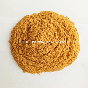 Feed Additive 60% Corn Gluten Meal for Animal, Cgm Supplier pictures & photos